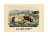 A Swell Sport Stampeded, Pub. by Currier and Ives, 1882 Giclee Print by Thomas Worth