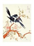 Xishang Meixiao (Looking Happy) Suzhou Giclee Print by  Gusu Ding Liangxian