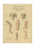 Moabitic Pottery from Mr Shapira's 2nd Collection, 1872 Giclee Print by Claude Conder