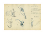 Mr Shapira's Collection, Plate 6, 1872 Giclee Print by Claude Conder