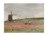Poppy Field, 1886 Giclee Print by Sir David Murray