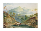 Extensive Landscape with Cattle Watering Giclee Print by Samuel Jackson