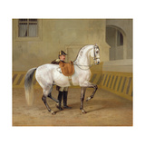 Man Training a Horse, 1856 Giclee Print by Albrecht Adam