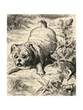 Alice Shrinks and Meets the Puppy, from 'Alice's Adventures in Wonderland' by Lewis Carroll,… Giclee Print by John Tenniel