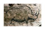 Rhinoceros, Upper Paleolithic Giclée-tryk