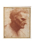 Head of a Beardless Man Looking Downward Giclee Print by Giovanni Agostino Da Lodi