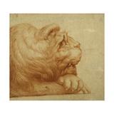 A Lion's Head in Profile Giclée-tryk af Francesco De Rossi Salviati Cecchino