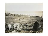 Tiberias from the Southwest, 1850s Impression giclée par Mendel John Diness