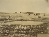 Photographic Views in the Holy Land, 1855-57 Photographic Print by Mendel John Diness