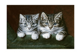 Two Tabby Kittens Giclee Print by Horatio Henry Couldery