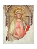 Madonna Del Parto Giclee Print by Taddeo Gaddi