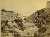 Valley of Jehosaphat from the North, 1858 Photographic Print by John Mendel