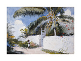 A Garden in Nassau, 1885 Giclee Print by Winslow Homer