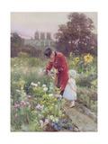 Grandad's Garden Giclee Print by Rose Maynard Barton