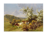 May Blossom Giclee Print by Charles Collins
