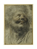 Head of a Bearded Man, Looking Up to the Right Giclee Print by Camillo Procaccini