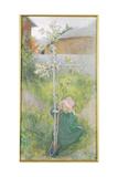 Appleblossom, 1894 Giclee Print by Carl Larsson