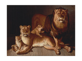Pride of Lions Giclee Print by Jean-Baptiste Huet