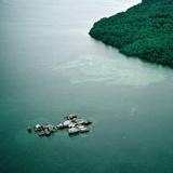Bugis Village Off the Coast of Kalimantan Photographic Print