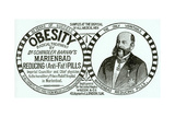 Advertisement for 'Dr. Schindler Barnay's Marienbad Reducing (Anti-Fat) Pills, 1890s Giclee Print by  English School
