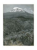 Kilimanjaro from Moshi, 1884 Giclee Print by Harry Hamilton Johnston