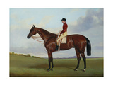 Mrs S. Wrather's 'Nutwith', with J. Marson Up, 1843 Giclee Print by Harry Hall