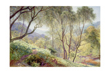 Ullswater from Gowbarrow Park, 1864 Giclee Print by Alfred William Hunt