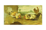 A Cock Fight Giclee Print by Frans Snyders