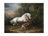 A Tiger Attacking an Arab Stallion, 1824 Giclee Print by Charles Towne