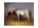 Grey and Chestnut Horses Giclee Print by Edward Robert Smythe