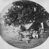 A Hot Day in the Indian Jungle, C.1860 Photographic Print by Willoughby Wallace Hooper