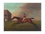Baronet with Sam Chifney Up, 1791 Giclee Print by George Stubbs