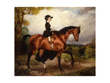 Portrait of Mrs. Thomas Conolly, Seated Side-Saddle in a Black Riding Habit on a Chestnut Hunter Giclee Print by William Osborne