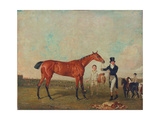 Shoveller Held by Her Trainer Will Chifney, 1819 Giclee Print by Benjamin Marshall