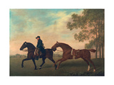 Two Hacks, 1789 Giclee Print by George Stubbs