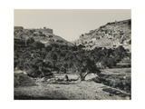 Valley of Jehosaphat from the South, 1850s Giclee Print by Mendel John Diness