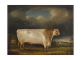 Comet, a Light Roan Short-Horn Bull in a Landscape, 1811 Giclee Print by Thomas Weaver