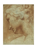 Head of a Young Woman Looking Down over Her Right Shoulder Giclee Print by Agostino Carracci