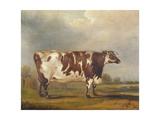 Wildair, an Eight-Year-Old Heifer in a River Landscape, 1827 Giclee Print by Thomas Weaver