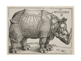 The Rhinoceros, 1515 Giclée-tryk af Albrecht Dürer
