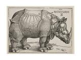 The Rhinoceros, 1515 Giclée-Druck von Albrecht Dürer