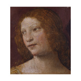 The Head of an Angel - a Fragment Giclee Print by Bernardino Luini