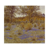 Bluebell Copse, 1889 Giclee Print by Helen Allingham