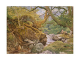 Study from Nature: Inveruglas, 1857 Giclee Print by Sir Joseph Noel Paton