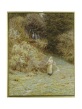 In the Primrose Wood Giclee Print by Helen Allingham