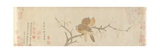Doves and Pear Blossoms after Rain, Yuan Dynasty, Late 13th Century Giclee Print by  Qian Xuan