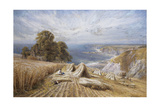 Harvesting on the South Coast, 1869 Giclee Print by Edmund George Warren
