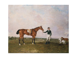 Zinganee' Held by Sam Chifney Jr. at Newmarket, 1829 Giclee Print by Benjamin Marshall