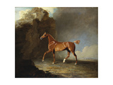 A Golden Chestnut Racehorse by a Rock Formation, 1800 Giclee Print by Benjamin Marshall