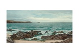 A Rocky Coastline Giclee Print by David James